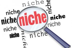 Niche Sites: Grow Your Online Business